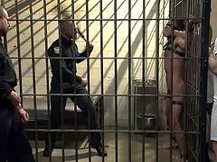 Because he was a bad boy, Brandon ended up in prison. Here he's about to experience how hard life can be! At first, he has tied on the cell's bars and now the guardian whips his body while a few inmates help him out. Everybody wants of piece of him and it looks like this man will end up cum filled!
