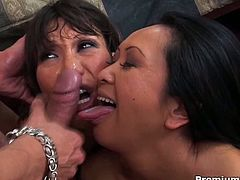 Couple of busty horny MILFs Ava Devine and  Kitty Langdon play with an enormous hard boner. Cum and watch as they devour that dong, fuck super hard and get their whorish mouths drilled and filled with cum.