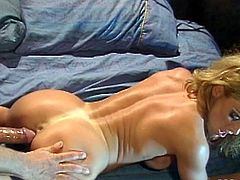 Have fun with this hardcore vintage scene where the busty blonde babe Shayla La Veaux is nailed by her lover as she moans at the top of her lungs.