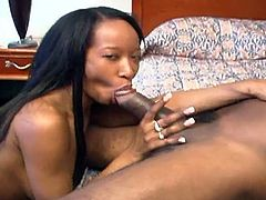 This black slut was just waiting for cock.  When it arrives she shakes her ass & spreads her legs for a nice, deep fuck in several positions on the nice bouncy bed!