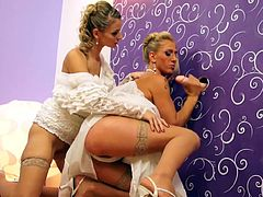 Enjoy cock sucking scene along two gals eager for rough adventures