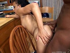 Lisa Strokes lets a black dude eat and drill her pussy in the kitchen