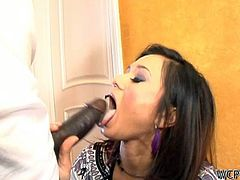 Check out super horny MILF cece stony getting her hands on a big black dong! She takes it in her tiny mouth like a real champ!