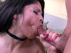 Make sure you take a look at this hardcore scene where the sexy Latina Evie Delatosso is fucked by this guy as you hear her moan.