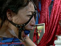 This Asian bitch has the most demanding mistress. She must endure many punishments, including hot wax.
