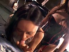Two slutty Asian girls give a double blowjob and a handjob