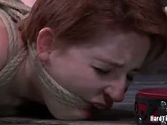 Checkout this redhead babe Piper in this hot bdsm video.She swears she cannot endure the pain. All it takes is a little motivation and he makes a liar out of her. The penalty for trying to mislead this man is steep. He is going to make her pay for it for the rest of the day.