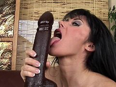 This huge toy cock will sure make busty Eva Karera to scream like sluts when masturbating with it