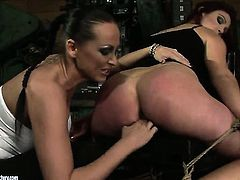 Brunette temptress with juicy tits is curious about eating Mandy Brights lesbian sweet love hole