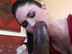 Amazing sensation does Alma Blue enjoys with one gian black cock smashing her tight butt hole in rough anal