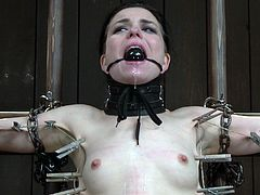 Check out this innocent brunette getting tortured by her master. She shows no mercy and uses all kind of devices to make her feel the pain!