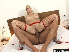 Best Gonzo brings you a hell of a free porn video where you can see how the naughty blonde slut Stacy Silver in red fishnets gets banged hard and deep into a breathtaking orgasm.