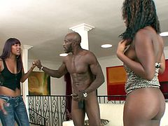 Gorgeous ebonies Coffee Brown and Natalie Evans lick each other's hot pussies as they get drilled by a big black cock in a nasty threesome.