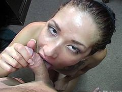 From the way she is sucking her lover's stiff cock you