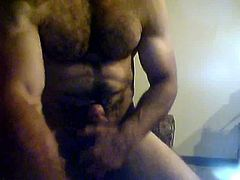 muscle cock