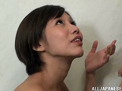 Voracious dark-haired chick stands on her knees and provides dude with awesome blowjob. Then she gives buddy titfuck and handjob until getting mouthful of jizz.