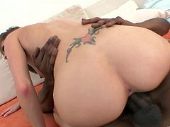 Slutty blonde milf Hailey Young, wearing lingerie, rubs her snatch with a dildo. Then she gives a blowjob to a black guy and welcomes his BBC in her shaved cunt.