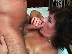 Checkout this mix clip of sexy and hairy grannies in here.See how this old sluts Evelyn, Alma and Sara sucking on big cocks and getting there hairy cunts fucked hard and taking huge cum loads on there big bobbies.