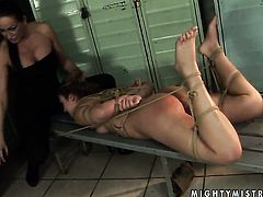 Brunette Mandy Bright gives Hadjaras fuck hole a lick