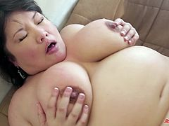 Take a look at this hardcore scene where the BBW Asian hottie Kelly Shibari sucks on a guy's big cock before being fucked silly.