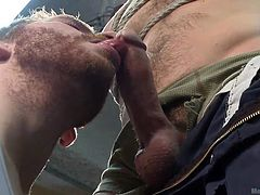 He's new and the guys love that. This dude is about to find out how things are around here, the hard way! His colleagues tied him up nice and hard and now they are playing with his mind and, of course, his cock. Check it out what lustful licks he receives on his dick and balls, surely that will make him cum a lot!