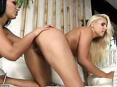 Blonde Brandy Smile shows off her sexy body as she gets her love box licked by lesbian Lana S