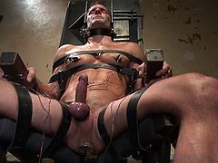 Gay hottie Cameron has been tied on that special chair with leather belts and plugged in. Yep, when we say plug in we really mean so check it out how the executor inserted a metal plug in his anus, all the way in. With electrodes on his body and that electric anal plug Cameron will cum soon!