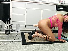 Brown-haired milf Francesca Le, wearing fishnets, is having a great time in the kitchen. The woman fucks her asshole with all kinds of toys, then tests her new fucking machine.