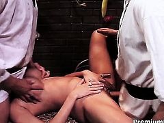 Trina Michaels spends her sexual energy with rock hard pole in her back porch