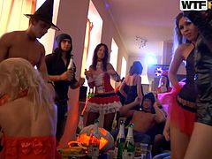 A group of college bitches are in for a Halloween sex party. They are all dressed in different kinky costumes, wear makeup and have their hair done. See the horny students getting undressed as they begin to play dirty. There are hot scenes of blowjobs. This Halloween is synonym with hardcore!