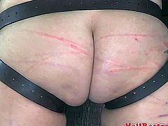 Bounded bdsm sub paddled and caned until her ass is bright red