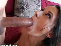 Mommy Blows Best brings you a hell of a free porn video where you can see how the alluring brunette milf Nikki Daniels gives a great blowjob to her man's cock.