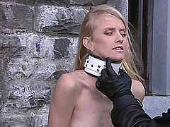 Take the chance to feel an amazing bdsm fantasy!Slaves in bondage are humiliated and punished by slapping, whipping, waxing and suspending in a dark dungeon! Allodia, Caroline Fox, Kate and Nikky Thorne are the submissive slavegirls!