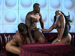 Nyomi Banxxx and Imani likes to take a huge cock in their mouth for a suck in a hardcore blowjob in orgasm.