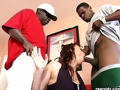 Provocative redhead Nikki Hunter haven't had dicks available for a few months. She took advantage of the fact of her black friends to suck it like it's her last.