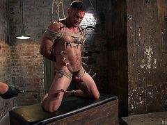 This gay hunk is tied up tightly in rope, and the master puts clothespins on the slave's hard nipples. The slave's cock and balls get whipped by the mean master. Master grabs the hunk slave's balls and squeezes them tightly which makes him scream.