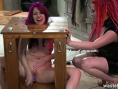 Wasteland brings you a hell of a free porn video where you can see how this horny lesbian dominatrix flogs and spanks her sex slave while assuming very hot poses.