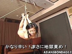 This sex video brings you both the thrills of hardcore bondage scenes and the presence of an Asian bitch punished severely. The black-haired slut is completely naked and helpless. Her hands and legs are tied up with strong rope knots. Click to watch the innocent girl hanging from the ceiling!