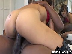 Max Mikita takes the big black cock in her mouth for a hot blowjob and her pussy gets fucked hardcore in hot and wild orgasm.