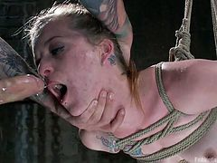 Rough sex and bondage are the words to describe best the ambiance from down the basement. A blonde babe has been strongly tied up with ropes from the ceiling. The slutty blonde with small tits tries to accomplish successfully the order to suck the guy's dick. Click to see her tortured and fucked from behind!