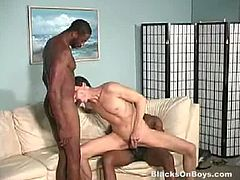 Jack Sanders is this black guys Tim and Solomon favorite and they wouldn't mind doing this everyday by fucking his mouth and his ass hole until Jack will say he is giving up.