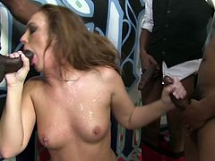Skilled busty MILF Maddy Oreilly enjoys hard gangbang with black guys