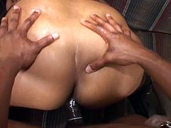 BBW ebony is oiled up in her fishnets and sucks a bit before getting banged hard by this hungry cock in this free hardcore sex movie.