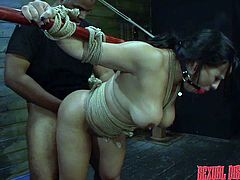 exotic gagged slut takes it from behind