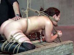 This master is punishing his brunette slave and spanking and anchoring her ass and clips her tits in this free tube video.