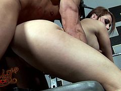 Stunning pornstar in short getting feasted hardcore doggystyle in the gym