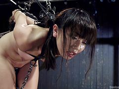 The master puts on his tight leather gloves and fingers this tied up slave. He is going to bring this little asian slut to orgasm. She is tightly gagged and bound. The master has hung her from the ceiling and then, moves her to a wooden crate, in the middle of the sex dungeon.