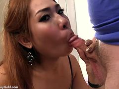Lady Boy Gold brings you an amazing free porn video where you can see how a redhead Asian shemale in stockings gets barebacked deep and hard into a massive anal orgasm.