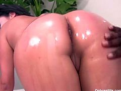 Hot busty brunette slut Alexis Silver sucks big black dick so nice and then gets her big butt oiled and wet pussy hole fucked