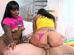 Ebony sluts sharing hard dick in threesome. Egypt and Violet Vasquez are up for anything lustful for our entertainment. They are ready to go all the way to entertain us.